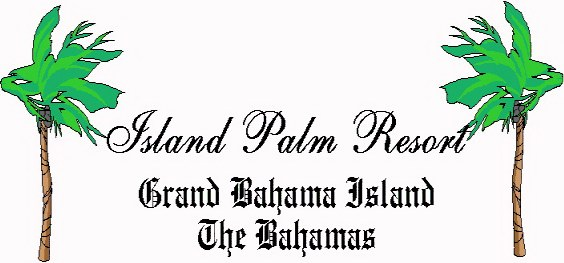 Welcome to Island Palms